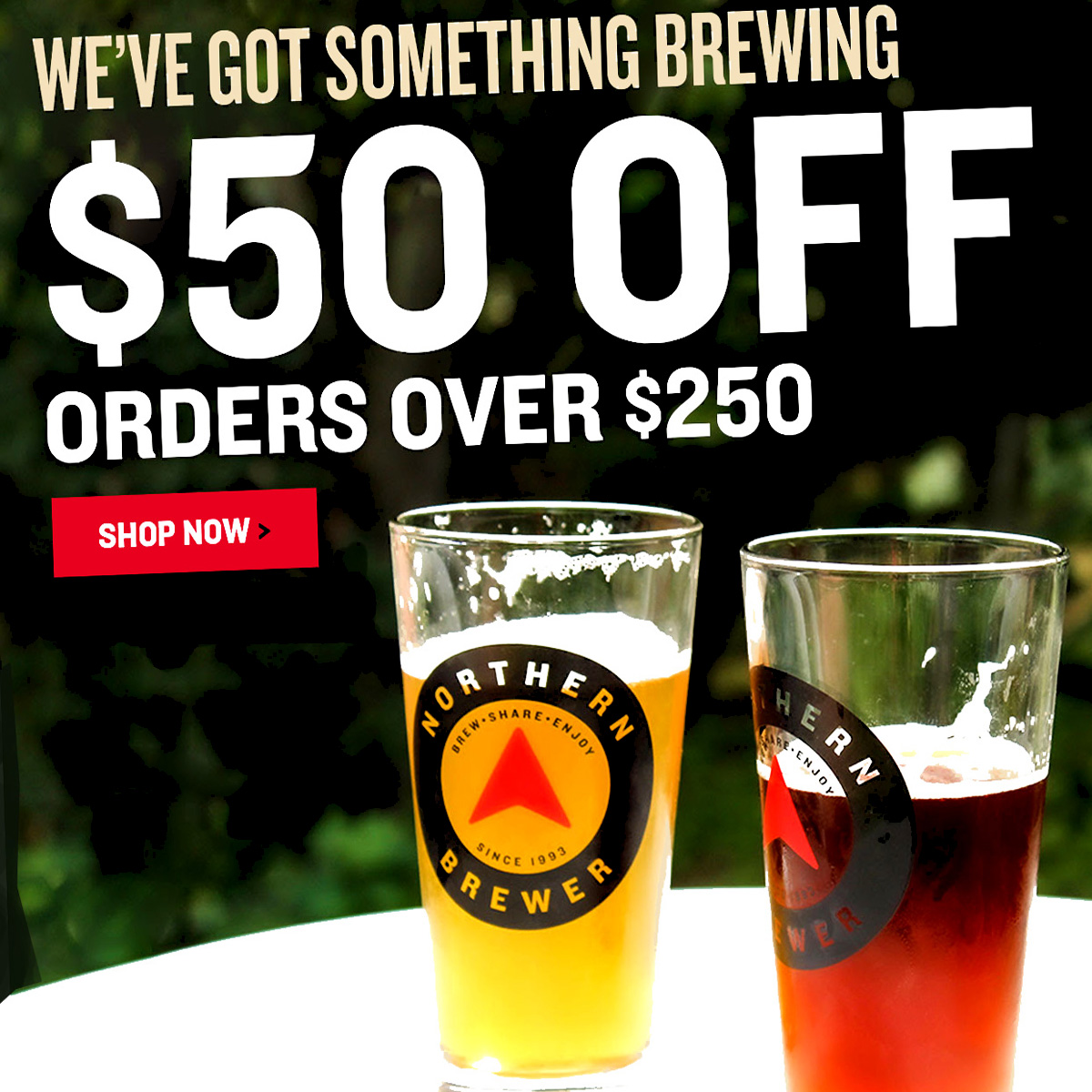 Home Wine Making Coupon Codes for Save $50 on a $250 Purchase at Northern Brewer with this NorthernBrewer.com Promo Code Coupon Code